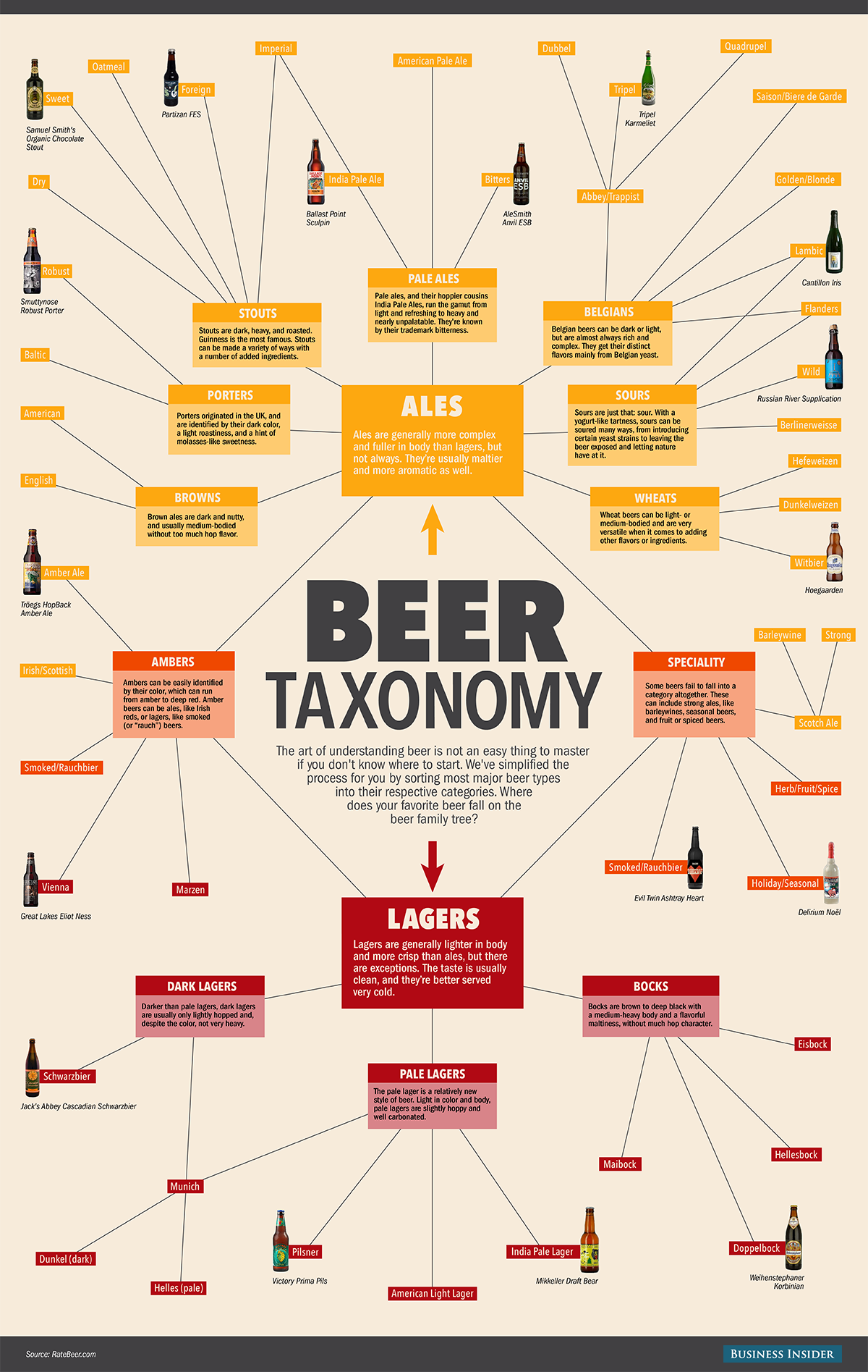 beer taxonomy Tall