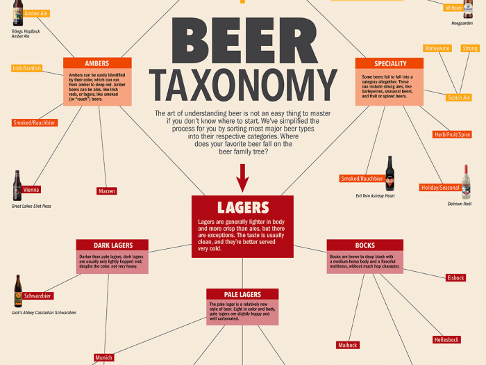 Beer Taxonomy Wallpaper