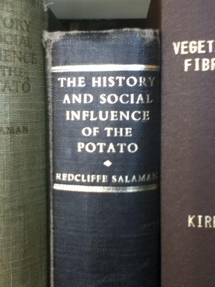 the history and social influence of the potatoe.jpg