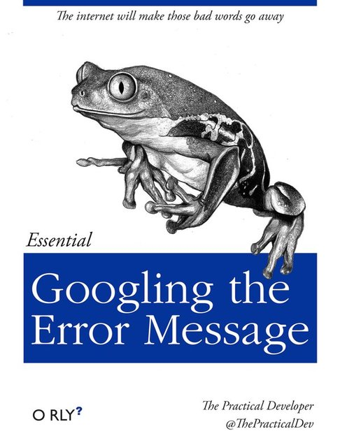 googling the error message.jpg