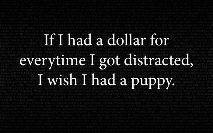 if I had a dollar 700x438 if I had a dollar