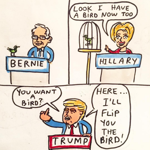 political birds.png