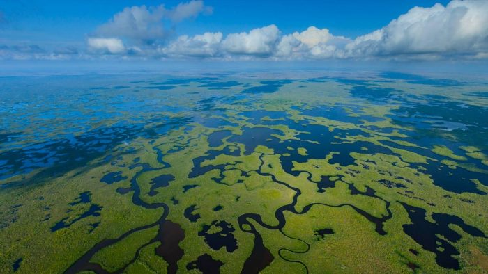Aerial view of Everglades National park in Florida 700x394 Aerial view of Everglades National park in Florida Wallpaper Nature Awesome Things