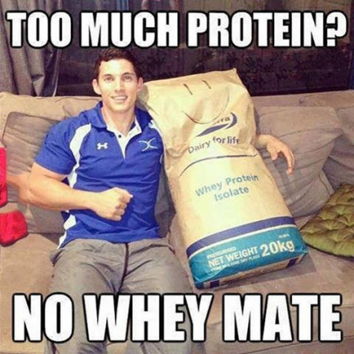 Too much Protein 720x720 Too much Protein
