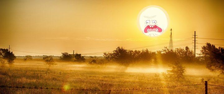 tqZb8Go 720x304 Sunshine Smiles Wallpaper Nature Humor