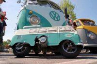 vw 539626 503047043075513 1047148875 n 200x133 VW wtf VW Volkswagon van transportation interesting awesome