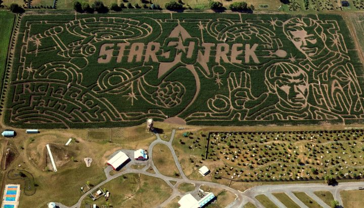 star trek in the maize.jpg