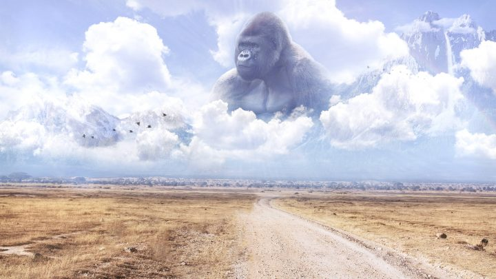 harambe in the sky.jpg