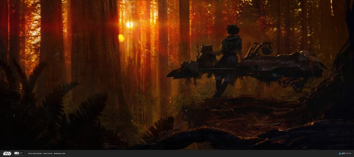 speeder sunset.jpg