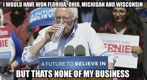 Bernie would have won.jpg