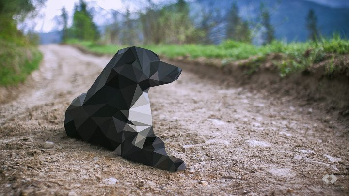 Low Poly Dog.jpg