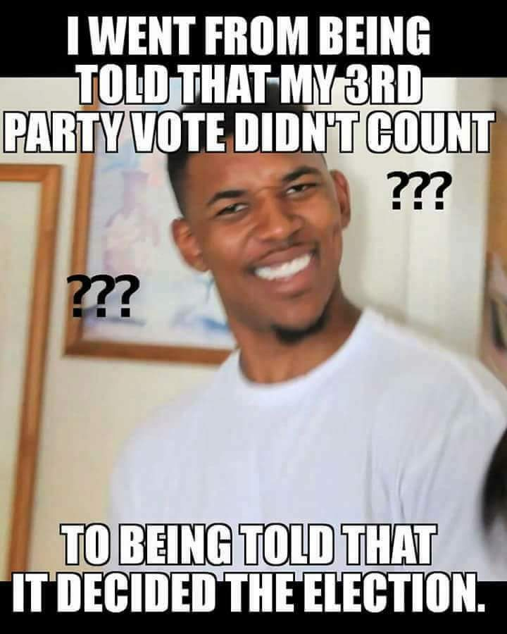 my 3rd party vote didn't count.jpg