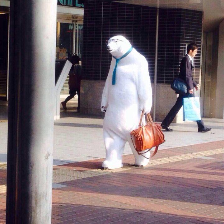 Business Bear.jpeg