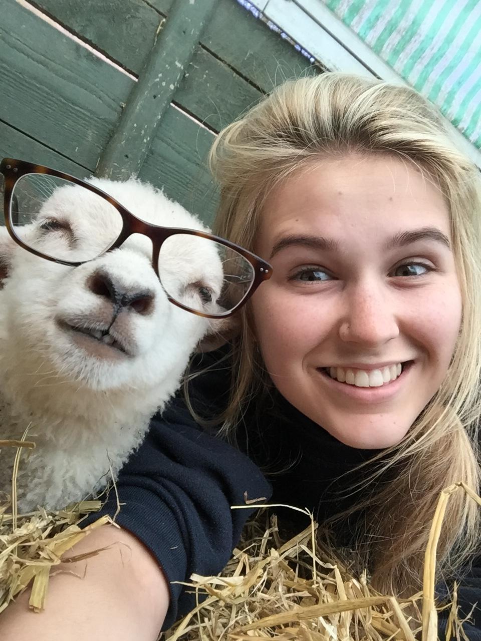 Happy Farm Animal In Glasses.jpg