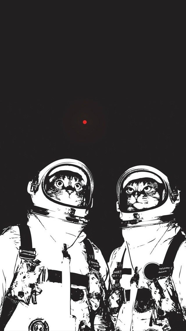 red dot space cats.jpg