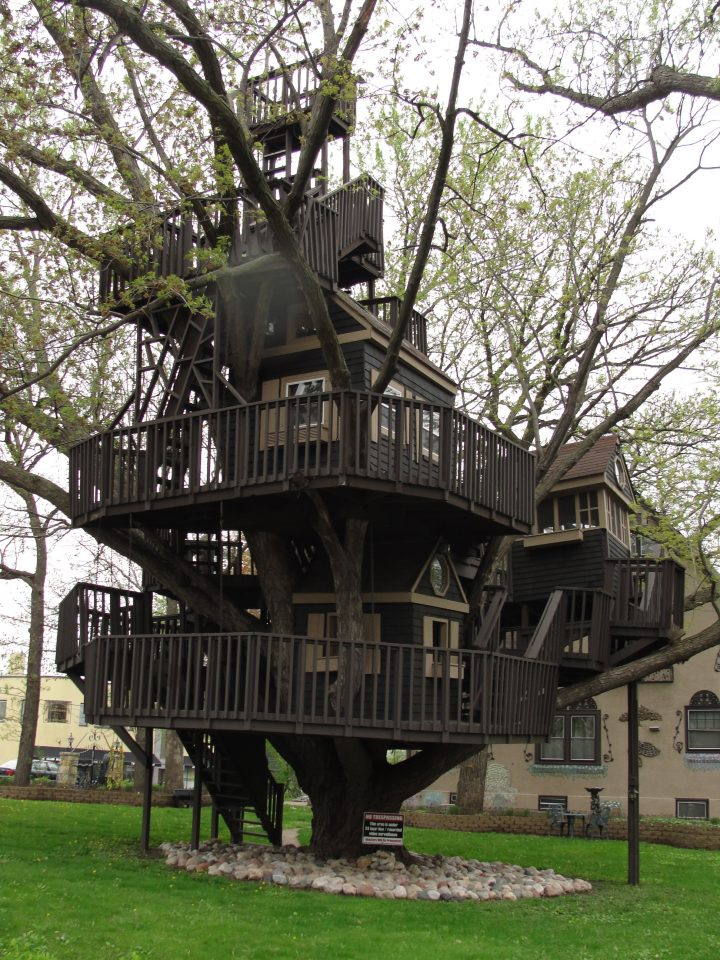 Epic Tree House