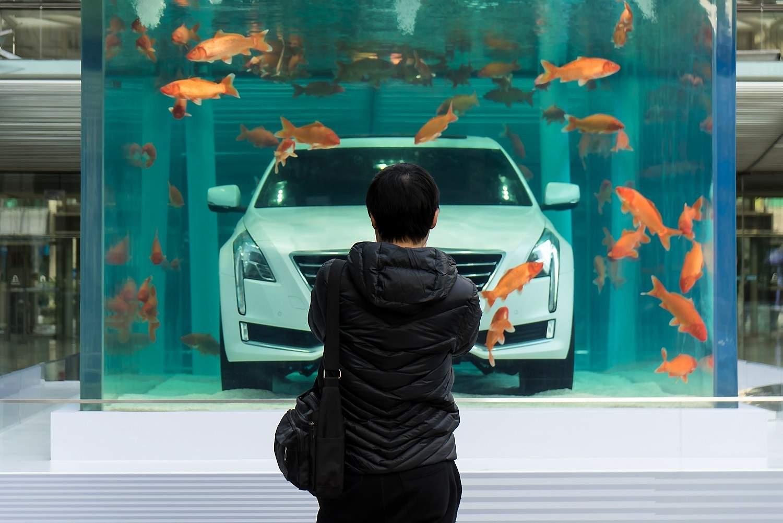 Underwater Caddy.jpg