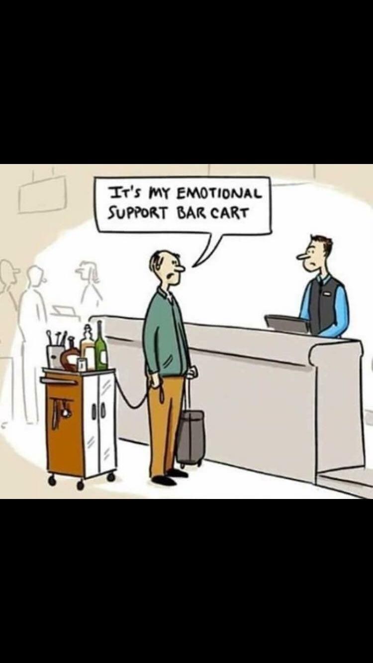 Emotional Support Bar Cart