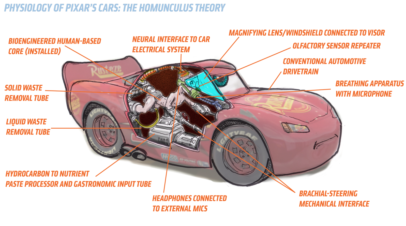 The Homunculus Theory