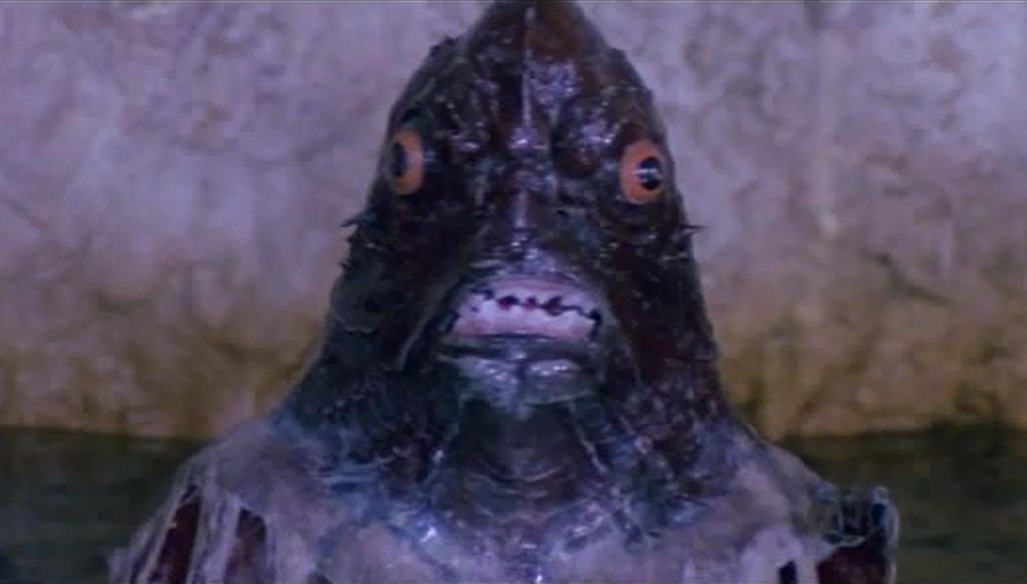 """Island of the Fishmen"" monster"