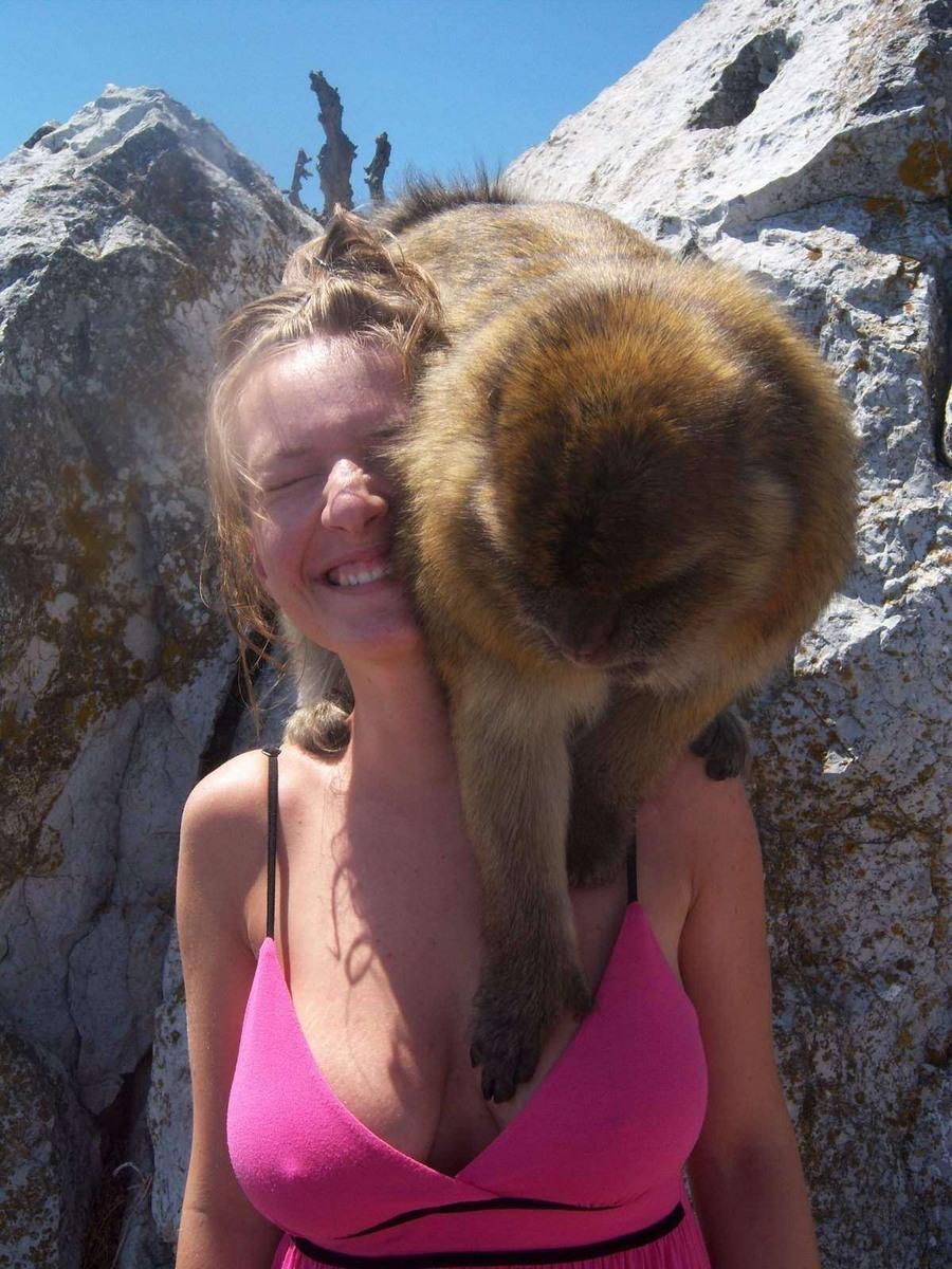 monkey getting a handful.jpg