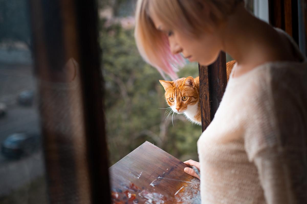 window cat.jpg