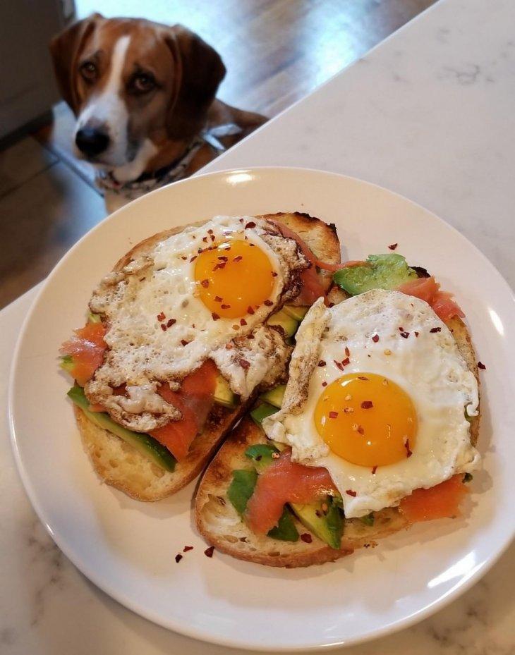 Beautiful Open Faced Sandwich