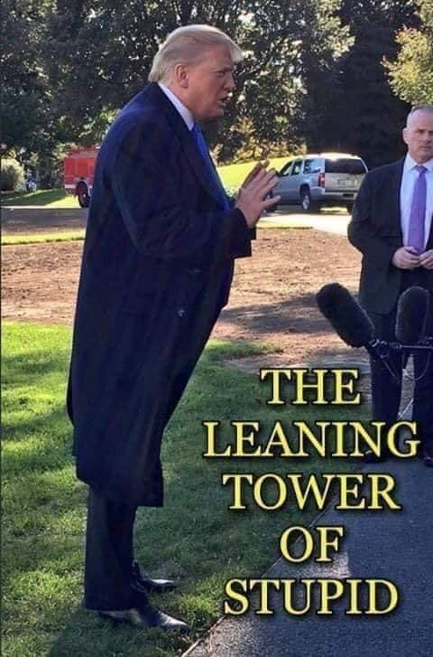 THE LEANING TOWER OF STUPID