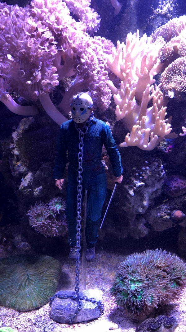 jason aquarium dectoration