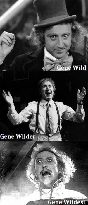 gene-wildest.jpg (37 KB)