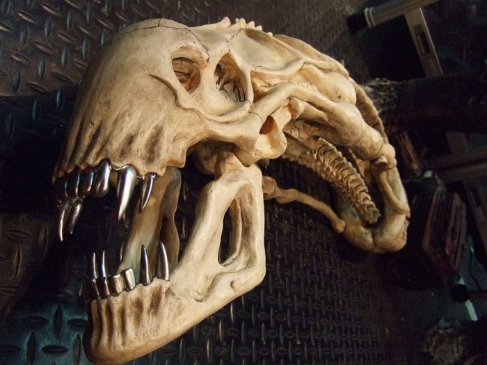 Alien-Skull-2.jpg (262 KB)