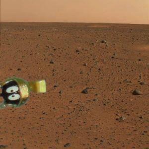 mars-rover-image.jpg (14 KB)