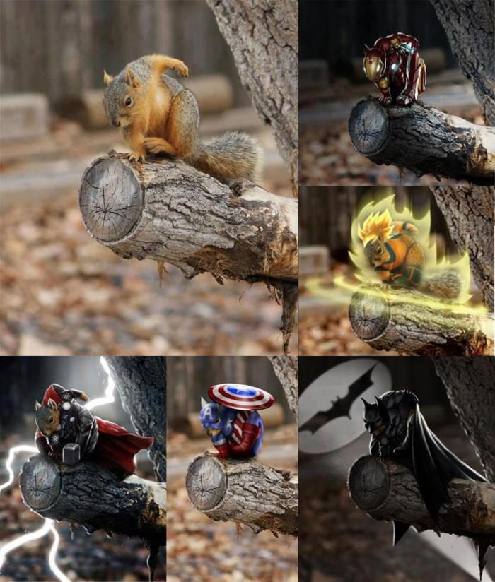 squirrel-heros.jpg (118 KB)