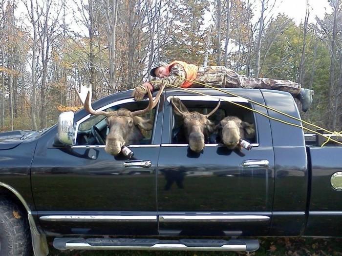 hunting 700x525 Hunting