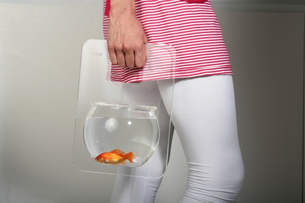 goldfish.jpg (36 KB)