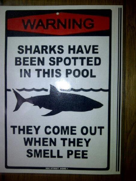 shark-pee.jpeg (46 KB)