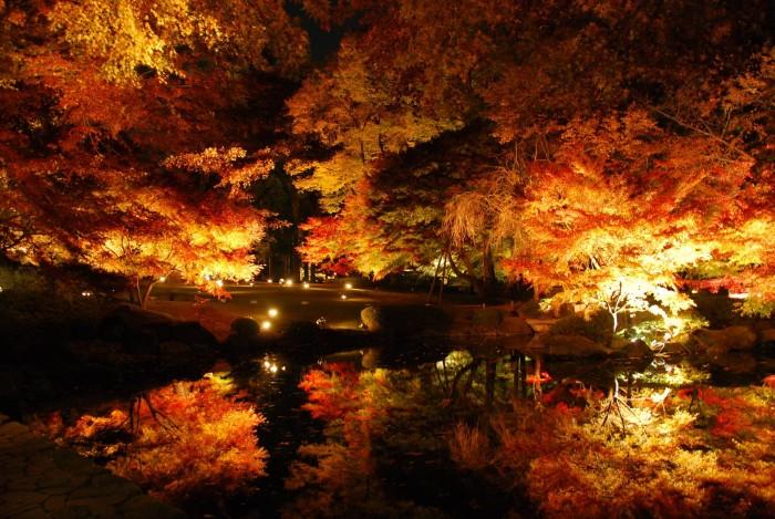Autumn.jpg (631 KB)