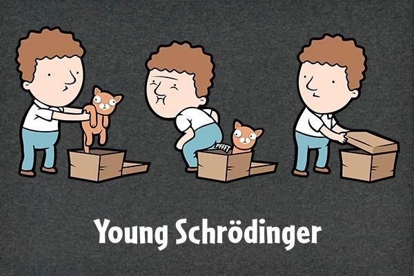 Young-Schroedinger_27020-l.jpg (156 KB)