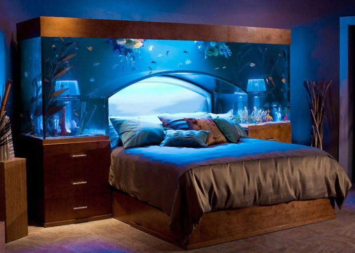 Bed aquarium