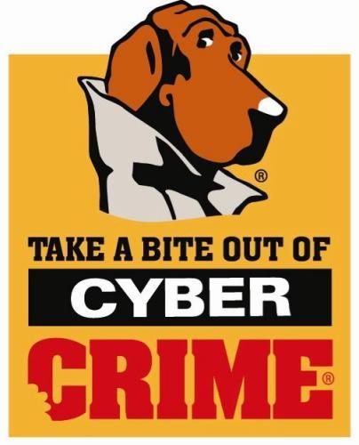 Cyber-Crime.jpg (27 KB)