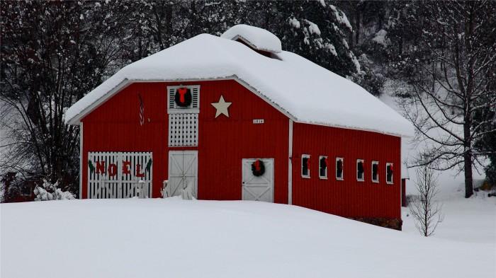 Snow-Christmas-Wallpaper-1920x1080.jpg (435 KB)