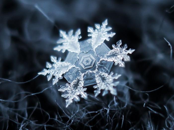 snowflake.jpg (231 KB)