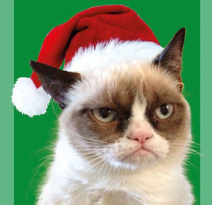 catgrinch Cat grinch Photoshop Humor Cute As Hell Animals Christmas Cats