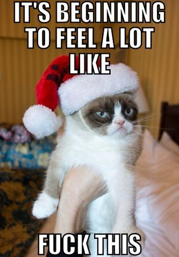 grumpy cat Christmas funny Christmas Cats