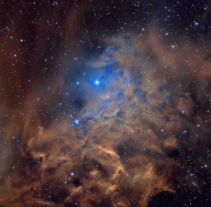 flamingstar_pugh_2666.jpg (1 MB)