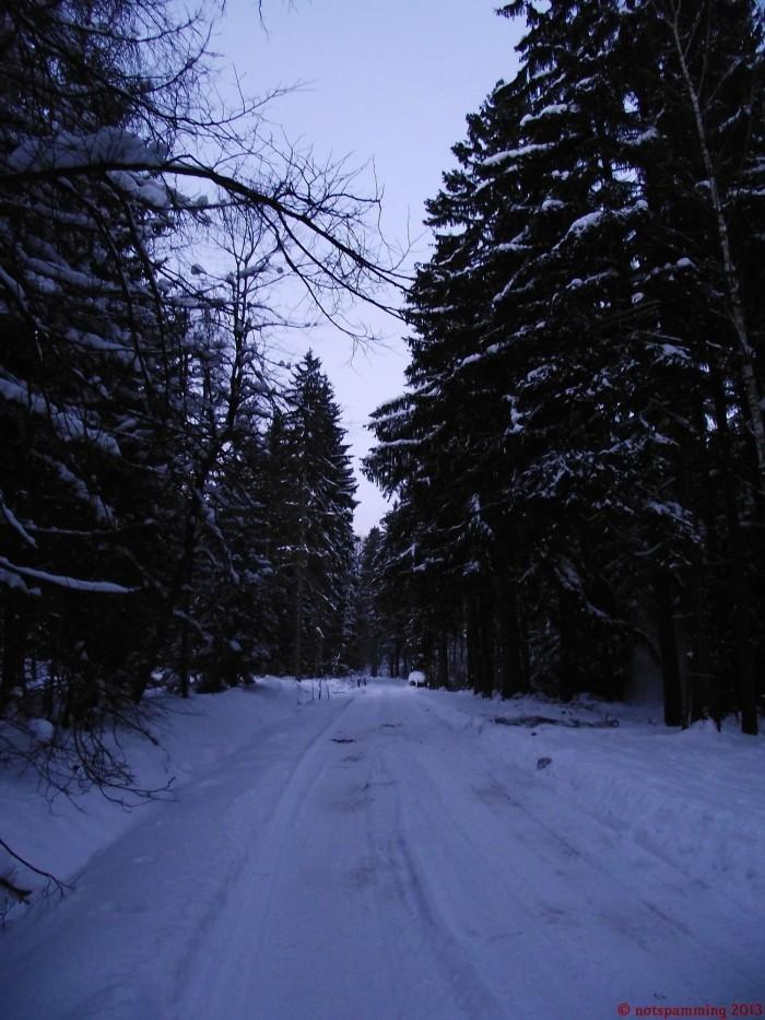 snow_2.jpg (390 KB)