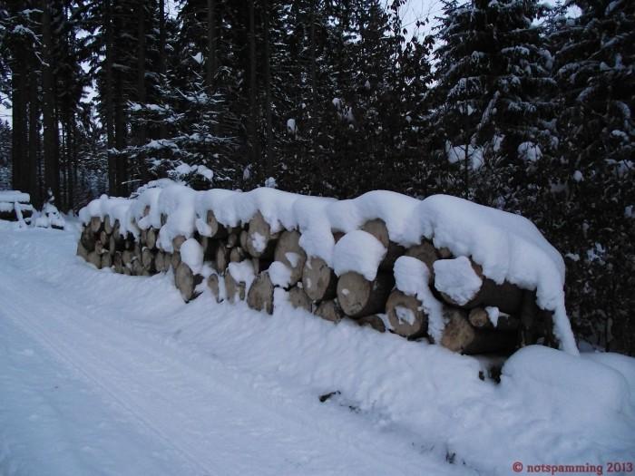 snow_3.jpg (408 KB)