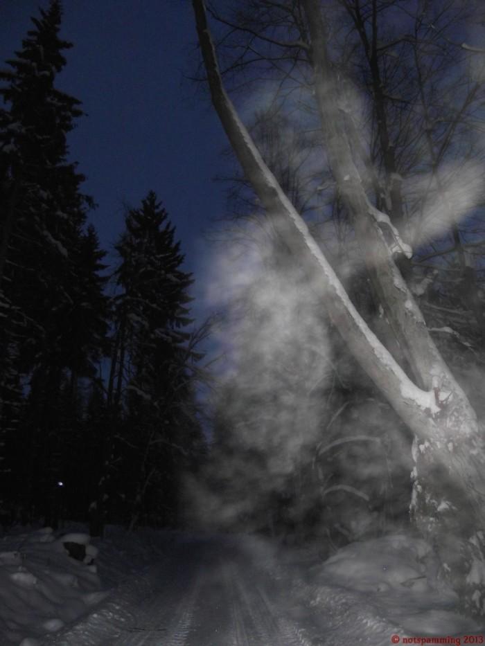 snow_4.jpg (229 KB)
