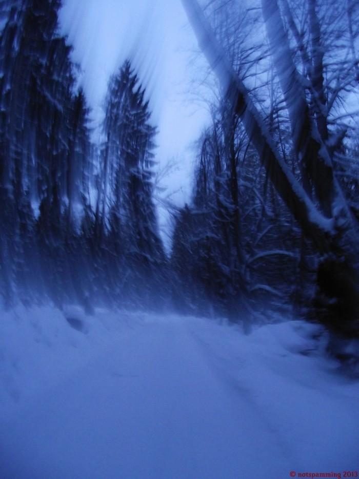 snow_5.jpg (249 KB)