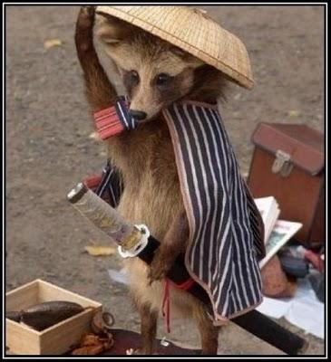 samurai_raccoons.jpg (34 KB)